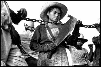 MEXICO. State of Morelos. 1984. A sugar cane cutter holds her machete.